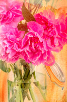 Peonies in a Jar