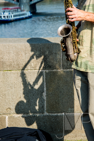 Musical Shadow